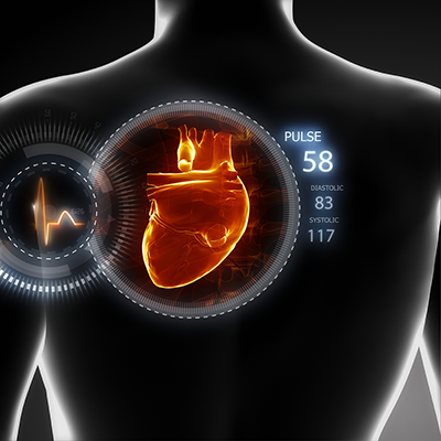 Illustration of the heart and blood pressure